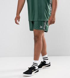 Зеленые футбольные шорты в стиле ретро Puma PLUS эксклюзивно для ASOS 57658002 - Зеленый