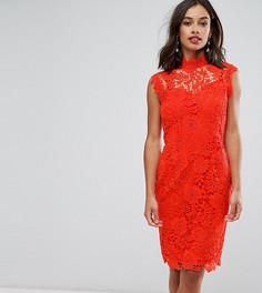 Кружевное платье-футляр с высокой горловиной и отделкой кроше Paper Dolls Petite - Оранжевый