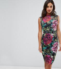 Кружевное платье-футляр с высокой горловиной и отделкой кроше Paper Dolls Petite - Мульти