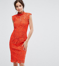 Кружевное платье-футляр с высоким воротом Paper Dolls - Оранжевый