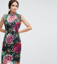 Кружевное платье-футляр с высоким воротом Paper Dolls - Мульти