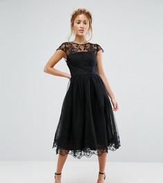 Платье миди для выпускного из премиум-кружева Chi Chi London Petite - Черный