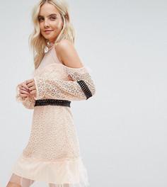 Кружевное платье мини с открытыми плечами и контрастным поясом True Decadence Petite - Розовый