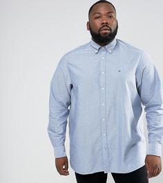 Синяя оксфордская рубашка классического кроя на пуговицах Hilfiger Denim PLUS - Синий