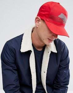 Бейсболка Calvin Klein - Красный