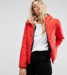 Укороченная дутая куртка с капюшоном Noisy May Tall - Красный