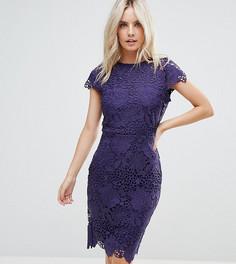 Кружевное платье с короткими рукавами Paper Dolls Petite - Фиолетовый