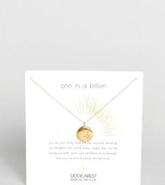 Позолоченное ожерелье с кристаллами Swarovski Dogeared - Золотой