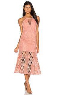 Кружевное платье mermaid fit - Endless Rose