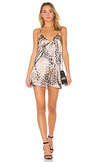 Платье-комбинация the bengal - LAcademie