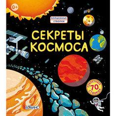 Секреты космоса Робинс
