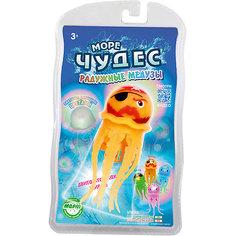 Плавающая радужная медуза Вилли, Море чудес