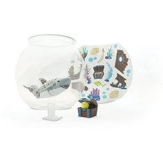 Акула-акробат с аквариумом, Море чудес