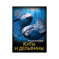 """Энциклопедия """"Киты и дельфины"""" Проф Пресс"""