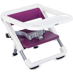 Переносной стул-подставка Brunch, Inglesina, grape