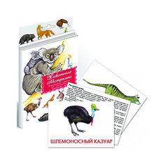 """Дидактические карточки """"Животные Австралии"""" Маленький гений"""