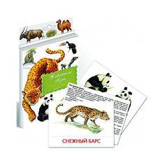 """Дидактические карточки """"Животные Азии"""" Маленький гений"""