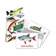 """Дидактические карточки """"Речные рыбы"""" Маленький гений"""