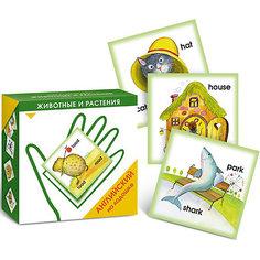 """Карточки """"Английский на ладошке. Животные и растения"""" Маленький гений"""