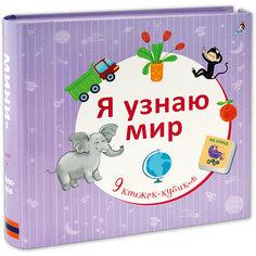 """9 книжек-кубиков """"Я узнаю мир"""" Робинс"""