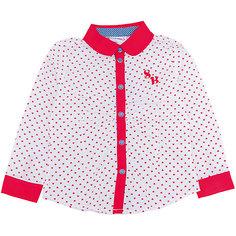Блузка для девочки Sweet Berry