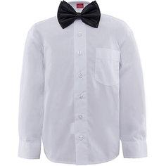Рубашка с бабочкой для мальчика Imperator