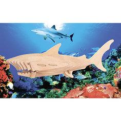 Акула, Мир деревянных игрушек МДИ
