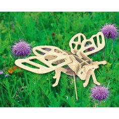 Цикада, Мир деревянных игрушек МДИ