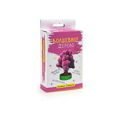 """Волшебные кристаллы """"Розовое дерево"""" Бумбарам"""