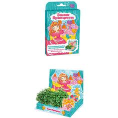 """Набор для выращивания """"Живая открытка"""" - Замок принцессы Happy Plant Бумбарам"""
