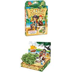 """Набор для выращивания """"Живая открытка"""" - Остров сокровищ Happy Plant Бумбарам"""