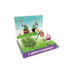 """Подарочный набор для выращивания """"С Днем рождения"""" - Пингвин Happy Plant Бумбарам"""