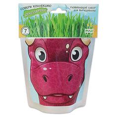"""Набор для выращивания """"Динозаврик"""" - Карни Happy Plant Бумбарам"""