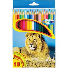Длинные цветные карандаши, 18 цветов Centrum