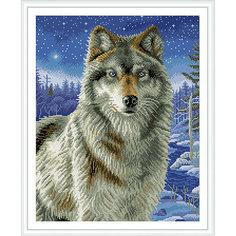 """Алмазная мозаика по номерам """"Волк"""" 40*50 см (на подрамнике) Tukzar"""