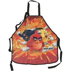 Фартук, Angry Birds Академия групп