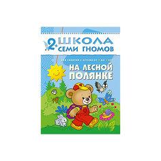 """Третий год обучения """"На лесной полянке"""", Школа Семи Гномов Мозаика Синтез"""