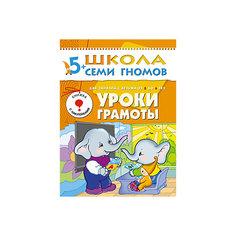 """Шестой год обучения """"Уроки грамоты"""", Школа Семи Гномов Мозаика Синтез"""
