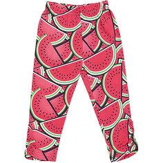 Леггинсы для девочки Sweet Berry