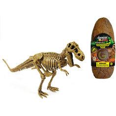 Яйцо динозавра - сборная модель Т-Рекс, Geoworld
