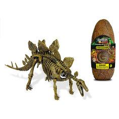 Яйцо динозавра - сборная модель Стегозавра, Geoworld