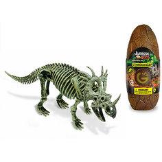 Яйцо динозавра - сборная модель Стиракозавра, Geoworld