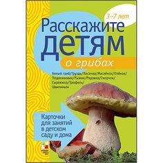 """Карточки """"Расскажите детям о грибах"""", Мозаика-Синтез"""