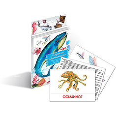 """Дидактические карточки """"Морские обитатели"""", Маленький гений"""