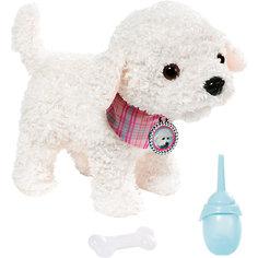 Собака Пудель, BABY born Zapf Creation