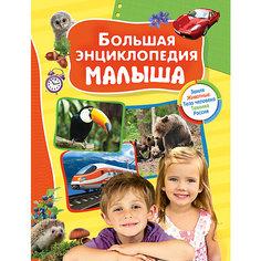 Большая энциклопедия малыша Росмэн