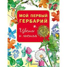 """Книга """"Мой первый гербарий: Цветы и листья"""" ПИТЕР"""