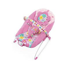 Кресло-качалка «Цветочная поляна», Bright Starts
