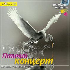 "CD ""Птичий концерт"" Би Смарт"