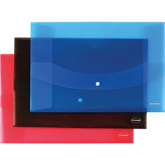 Centrum Папка-конверт с кнопкой А3, ассорти